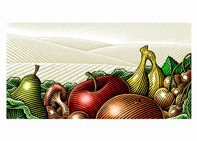 Fruit Woodcut
