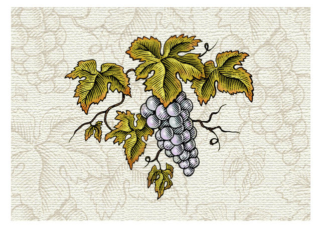 Grapes & Leaves